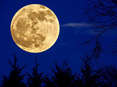 Full moon photo taken 02 March 2012 by Gordon M. Robertson at Scotland flickr.com Click image for video.