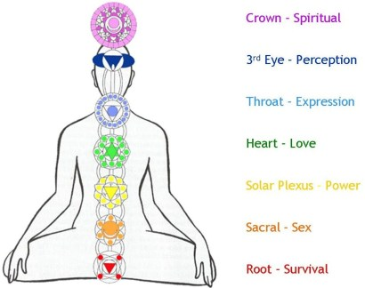 """Chakra is a Sanskrit word meaning """"disk"""", """"vortex"""", or """"wheel"""". Chakra is an energy center that regulates the flow of energy in our bodies. The traditional chakra system includes seven basic chakras or energy centers energetically located along the spinal column."""