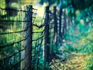 Image source: http://tribework.blogspot.com/