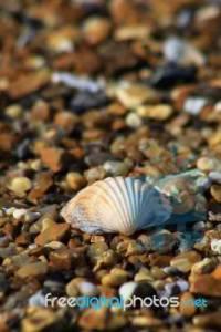 Image Source: http://www.freedigitalphotos.net/