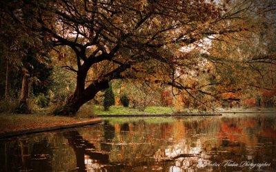 Image Source: http://makbethstudio.deviantart.com/