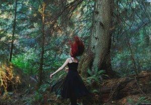 Image Source: http://thefoxandtheraven.deviantart.com/art/